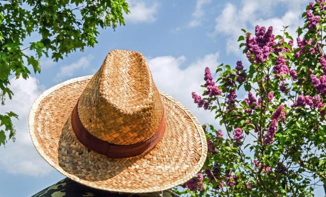 hat-1379590_1920
